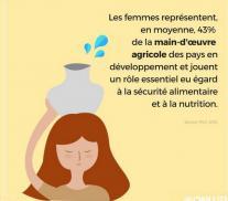 journée internationale de la femme rurale Lien vers: https://reseau-insertion-egalite.educagri.fr/wakka.php?wiki=ActualiteS